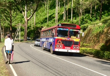 Buses careening around switchbacks
